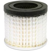 Filter, Pneumatic Air (Rapco Or Airborne)